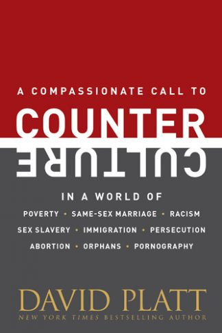 cover image of Counter Culture book