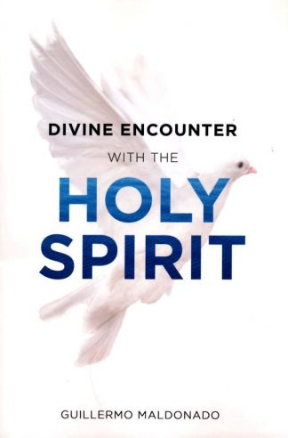 Cover image of Divine Encounters With the Holy Spirit book