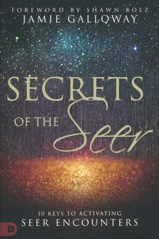 Cover image of Secrets of the Seer book