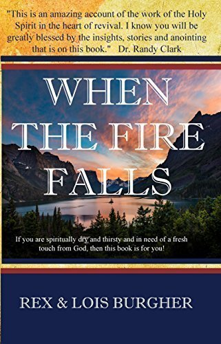 cover image of When the Fire Falls book
